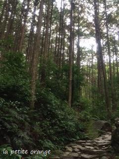 熊野1.JPG